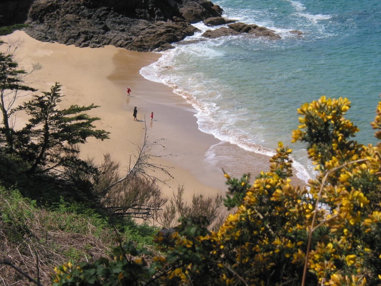 Randonnée le long de la côte