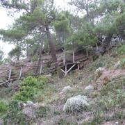 Escalier au départ du Port